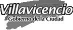 Alcaldia de Villavicencio